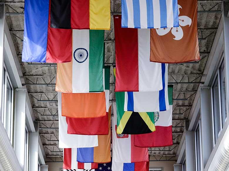 Flags representing the international reach of some special programs.
