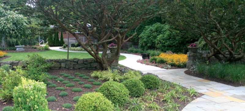 Dr. Lil Junas Garden